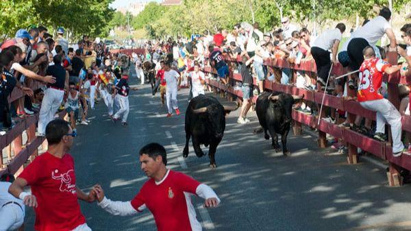 'Espantá' en Alcalá: el Ayuntamiento no sabe nada de la empresa que iba a organizar los toros de Ferias