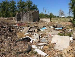 Chamizo rodeado de basura de la calle de la Montaña, en plenos Sotos Históricos de Aranjuez.