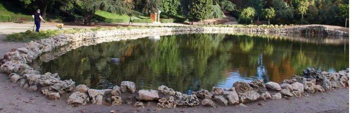 La excelencia 'real' del agua de la Fuente del Berro