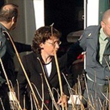 El informe forense de De Mingo apunta a su 'libertad'