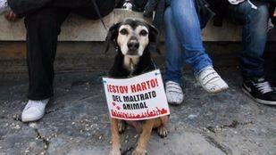 Detenido en Alcalá por golpear y arrastrar a su perro