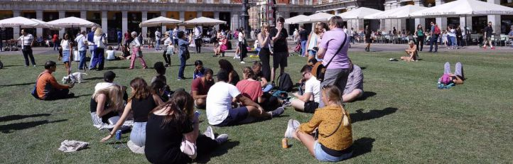 La Plaza Mayor se llena de césped