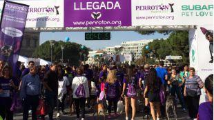 Más de 4.000 participantes en la Perrotón Madrid 2017