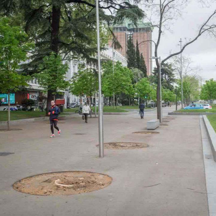 La ciudadanía decide sobre cómo mejorar las zonas verdes