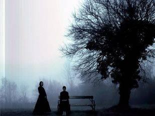 Como el bosque en la noche, la última novela de Álvaro Bermejo, se presenta en Madrid