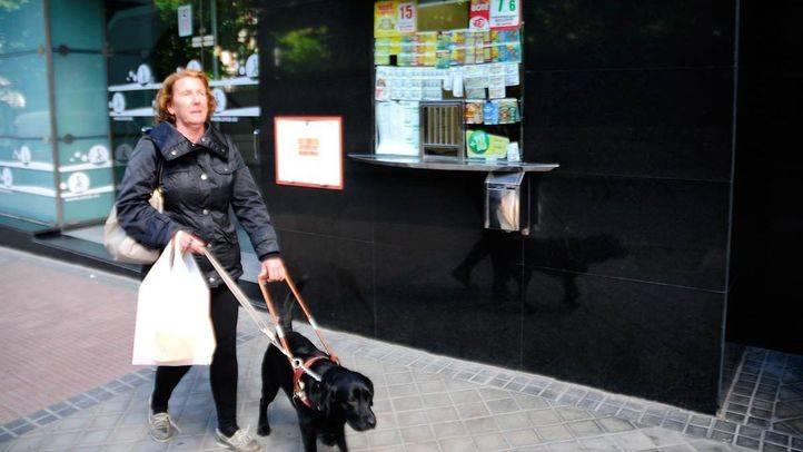 Los perros guía 'reivindican sus derechos'