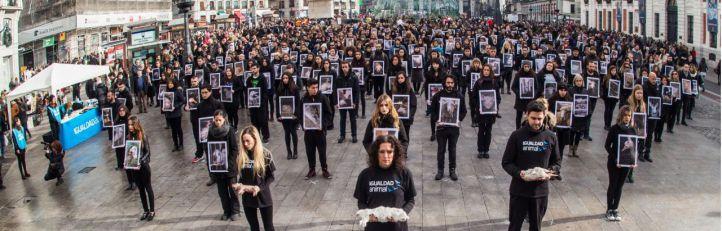 Más de 400 cadáveres de animales en la Puerta del Sol