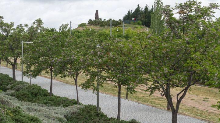 Parque Forestal de Valdebernardo.