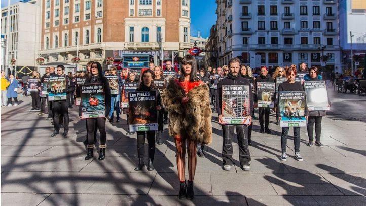 Un abrigo sangriento, contra la industria peletera