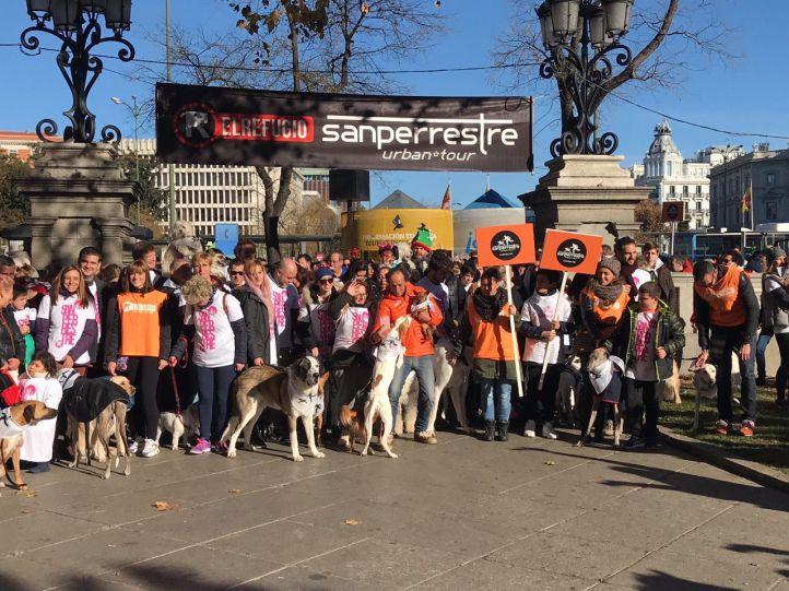 Los perros invaden el centro de Madrid