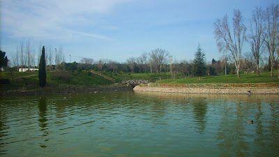 Lago del parque de La Alhóndiga en Getafe