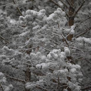 Alerta por frío hasta el viernes: mínimas de -7 en la sierra