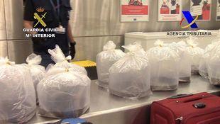 Angulas intervenidas en el aeropuerto antes de ser exportadas a Asia