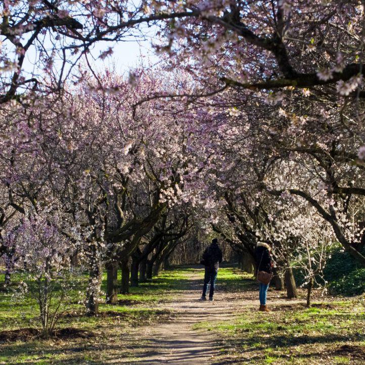 Reabre el parque de la Quinta de los Molinos