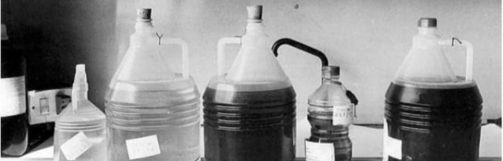 El aceite de colza envenenado se cobra su primera víctima