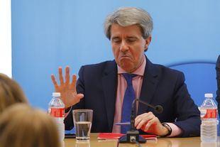 Garrido sigue a Génova y se descarta para las elecciones
