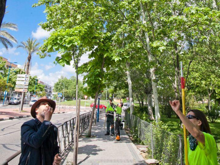Mariquitas: la alternativa 'ecofriendly' de Leganés contra el pulgón