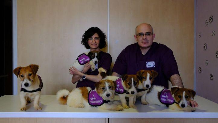 Lidia y Paco con algunos de los perros de Canem.