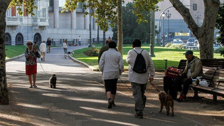 Actual paseo peatonal desde la Plaza de España hacia el eje Bailén-Ferraz.