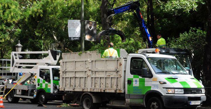 El Ayuntamiento asumirá el cuidado de zonas verdes interbloque