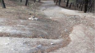 Remodelación del Parque Sur, Nuestra Señora de Valvanera y la colonia Loyola