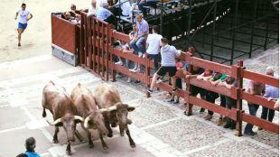 Chinchón deja en el aire sus espectáculos taurinos infantiles
