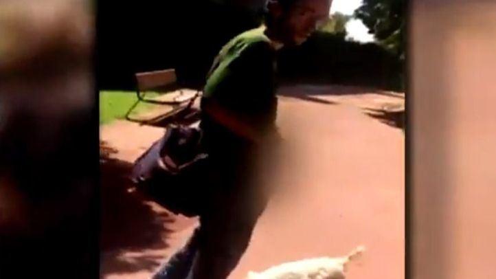 La Policía detiene al exhibicionista de Carabanchel