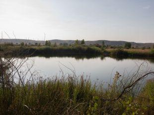 La multinacional quiere que la nueva laguna esté lista en primavera.