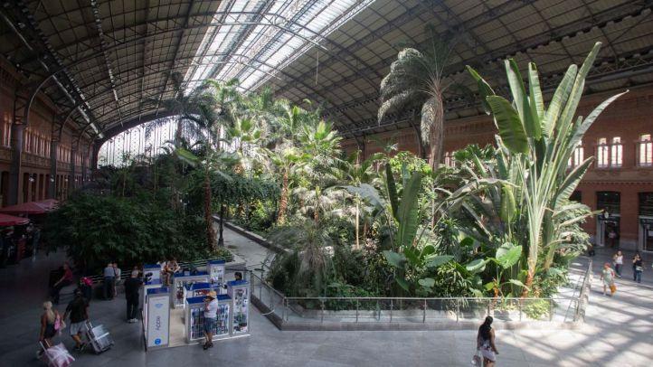 Invernadero en la antigua estación de Atocha donde estaba el estanque de las tortugas.