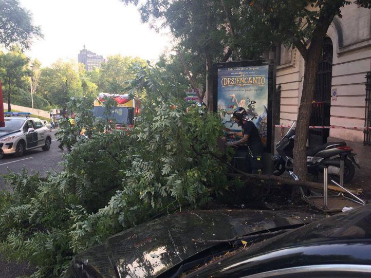 Imágenes del coche empotrado contra una terraza del distrito de Salamanca.