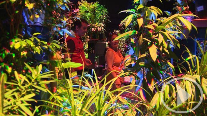 Un jardín colaborativo puebla Conde Duque
