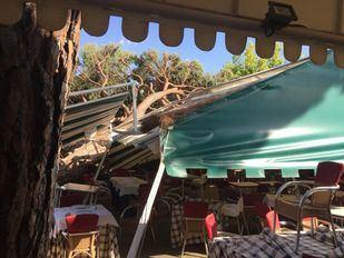 Un árbol aplasta la carpa de un restaurante sin causar heridos