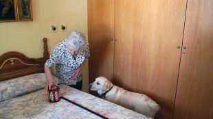 En 2050 habrá en el mundo más de cien millones de personas con Alzheimer
