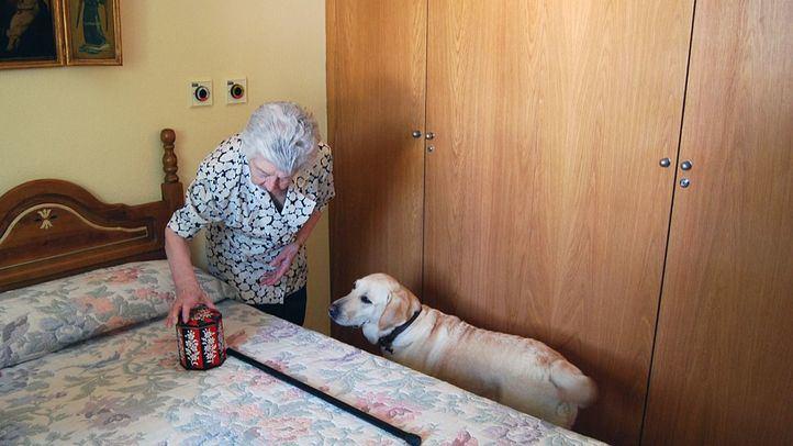 Se cree que en España hay entre 800.000 y 1,2 millones de personas con Alzheimer, una enfermedad infradiagnosticada,