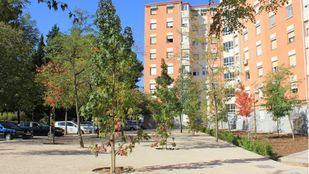 Ciudad Pegaso verá sus zonas verdes acabadas en diciembre.