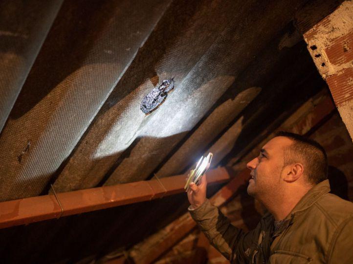 Sin recursos para retirar el amianto, los tejados de San Pascual