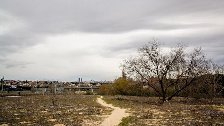 Corredor ecológico en la zona del arroyo Retamares.
