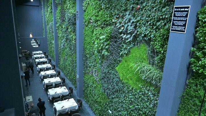 Alcorcón alberga el jardín vertical interior más grande de Europa