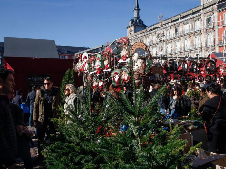 Guía para regalar otra vida a los árboles de Navidad
