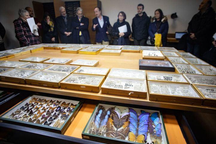 El Ayuntamiento de Madrid ha recibido la donación de la colección de coleópteros y mariposas del entomólogo Manuel Ortego y ha construido el Centro de Entomología Manuel Ortego junto al lago de la Casa de Campo.