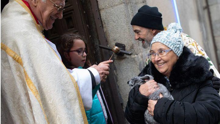 Las Vueltas a San Antón marcan el inicio de las fiestas