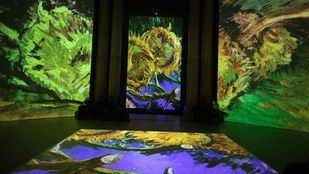 Exposición multimedia sobre la pintura de Vincent van Gogh en el Círculo de Bellas Artes.