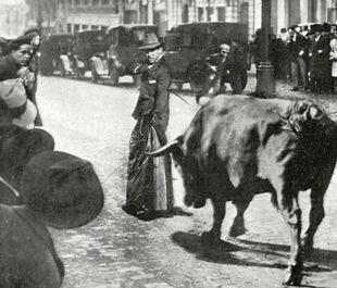 """Fue Diego Mazquiarán, el """"Fortuna"""", el que al encontrarse al toro en la Gran Vía, decidió matarlo con el abrigo puesto."""