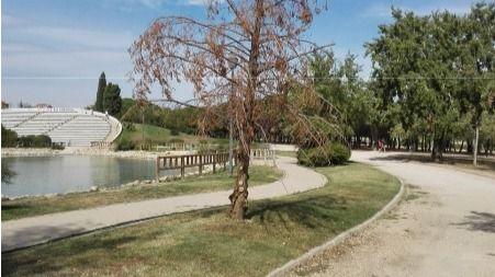 Parque de las Cruces.