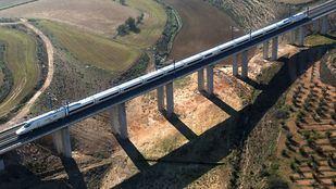 El tren Badajoz-Madrid sufre un retraso tras arrollar a un rebaño de ovejas
