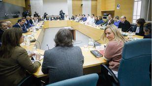 La consejera de Transportes, Vivienda e Infraestructuras, Rosalía Gonzalo, ha presidido el Comité Madrileño del Transporte por Carretera. En él están representados el Ayuntamiento de Madrid, con Inés Sabanés, la FMM, con su presidente Guilermo Hita, y los representantes de las asociaciones del Taxi y del sector de la VTC.