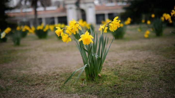 Planes para dar la bienvenida a la primavera