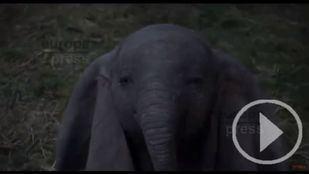 Dumbo protagoniza la cartelera de este 'finde'
