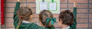 """""""Naturaliza, el proyecto que incluye el medioambiente en el currículo escolar"""""""