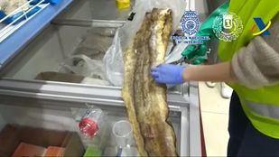 Anguilas incautadas en Usera y Cobo Calleja.